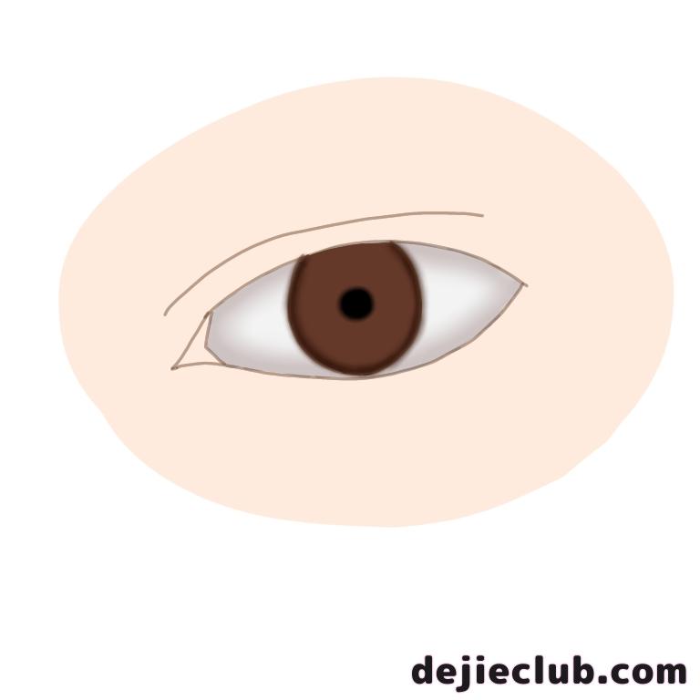 瞳のフチと瞳孔を描く